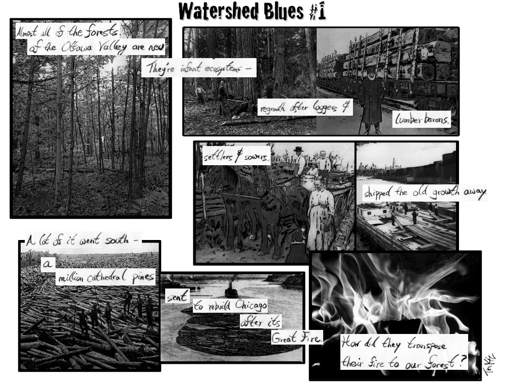 Watershed Blues #1 Snapshot
