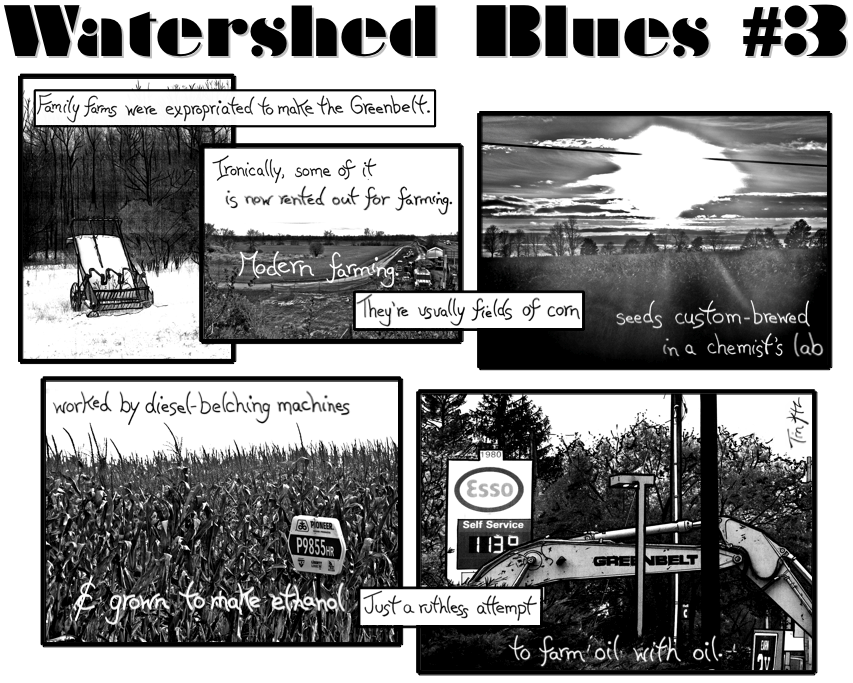Watershed Blues #3 Final Snapshot